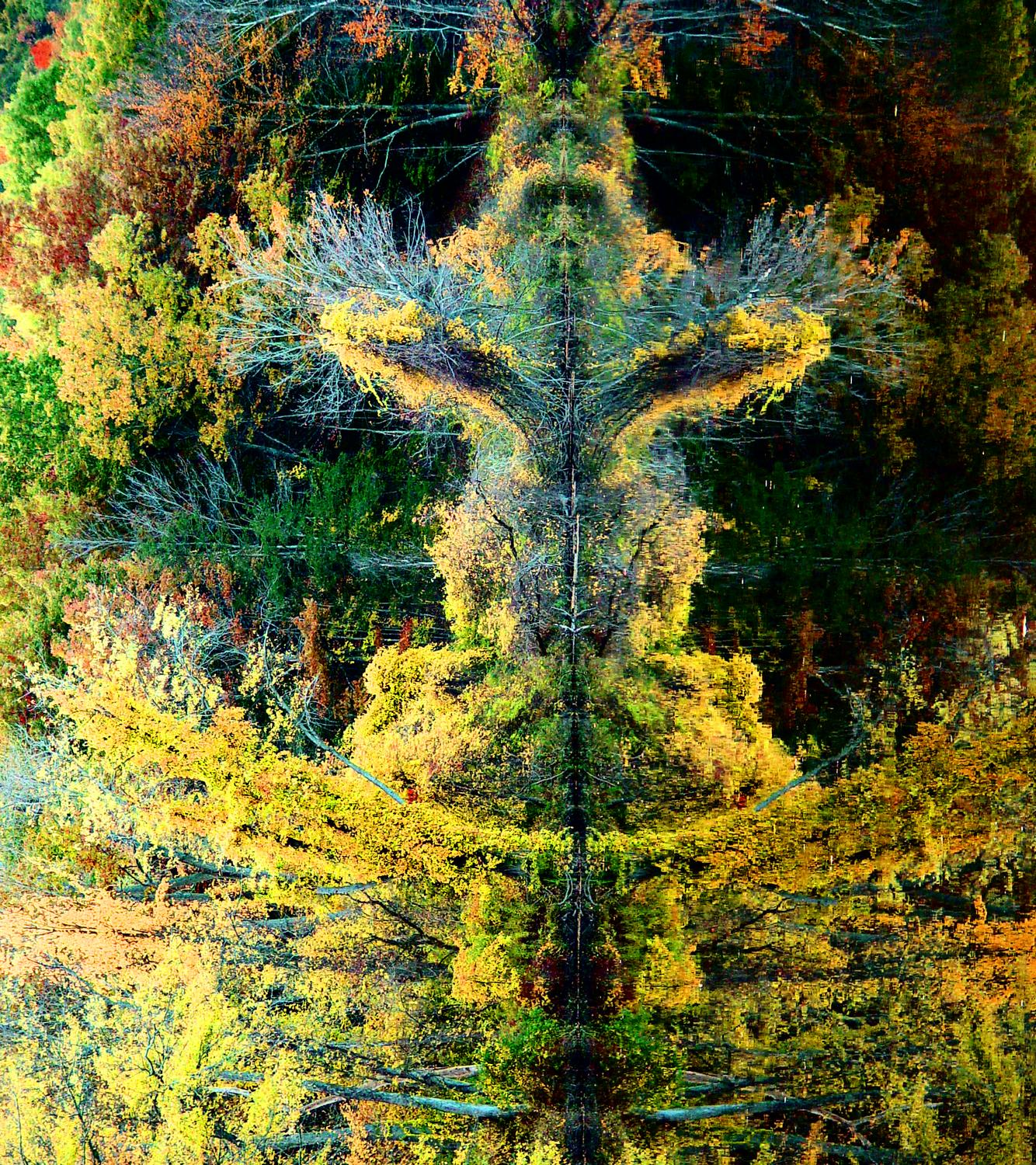 - The spirit of autumn - Techno-Impressionist Museum - Techno-Impressionism - art - beautiful - photo photography picture - by Tony Karp