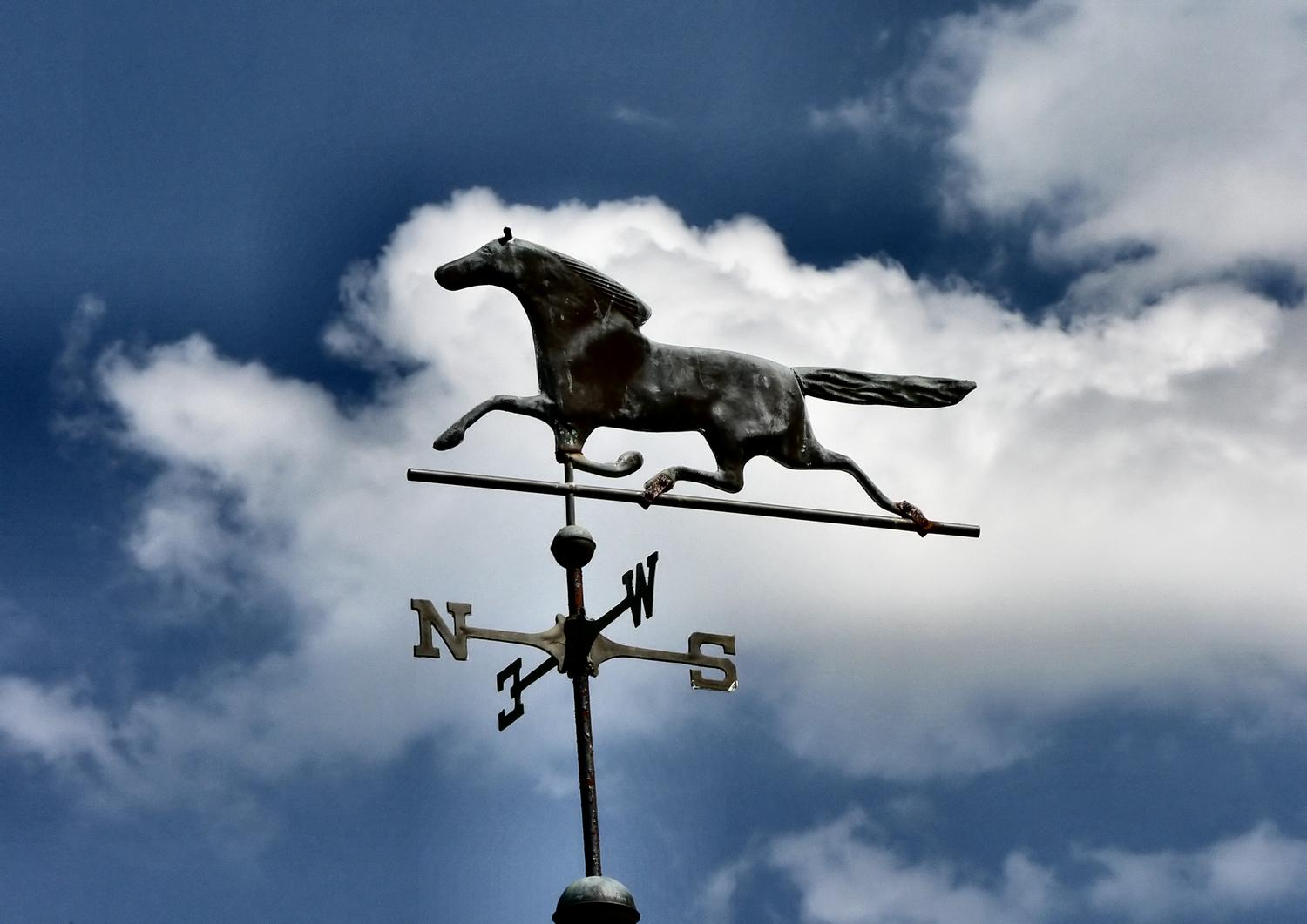 - Horse over my head - #1 - Techno-Impressionist Museum - Techno-Impressionism - art - beautiful - photo photography picture - by Tony Karp