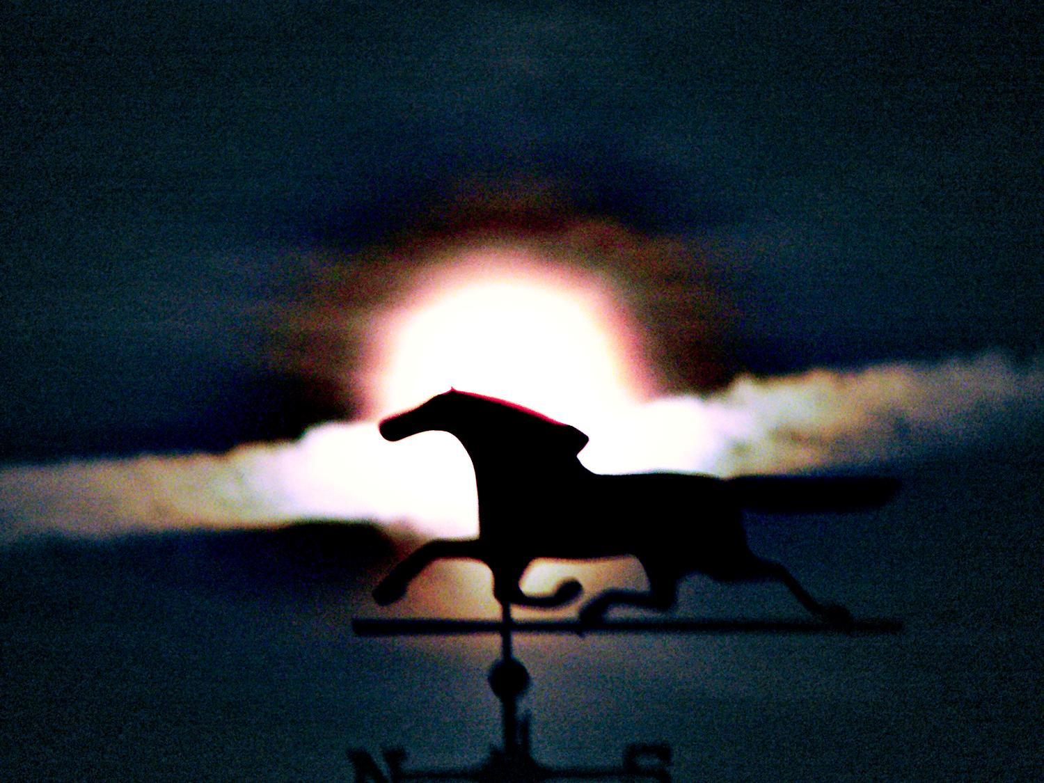 - Horse over my head - #6 - Techno-Impressionist Museum - Techno-Impressionism - art - beautiful - photo photography picture - by Tony Karp